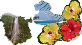 Car Créole, votre agence de location de voiture pas cher en Guadeloupe